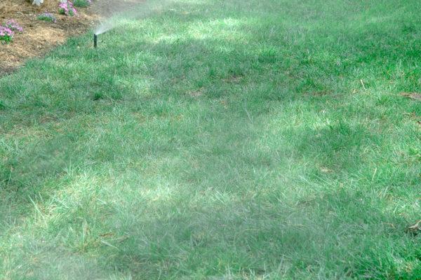 Landscape Irrigation System | Irrigation System Landscaper | Charlotte