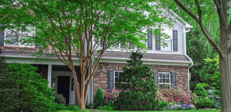 Landscape Contractors in Charlotte NC | Landscape Design | DeSignia