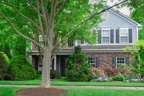 Landscape Maintenance Charlotte NC | Residential Landscape Contractor